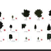 درخت اسکچاپ