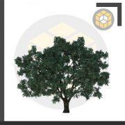 ۱کامپوننت درخت